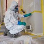Mold-Remediation-Services-in-Omaha-NE