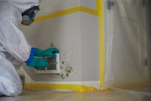 Mold-Remediation-Services-Hastings-NE